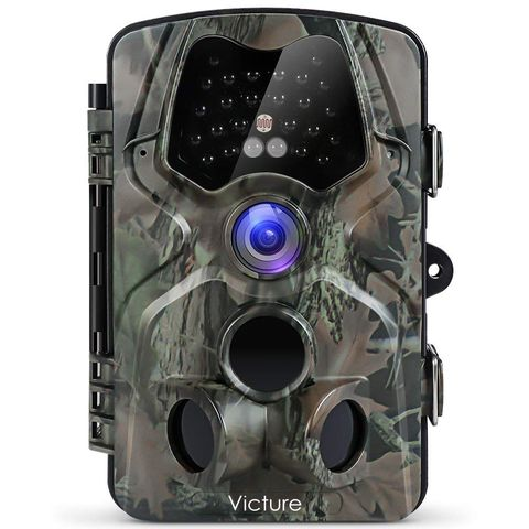 Best wildlife cameras to buy now