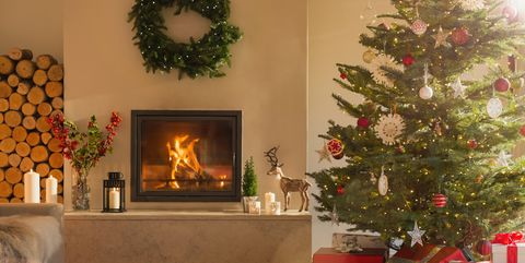 Living Christmas Tree.7 Ways To Host An Eco Friendly Green Christmas