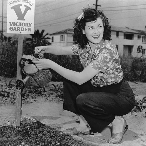 barbara hale waters garden, 1945   victory gardens ww2