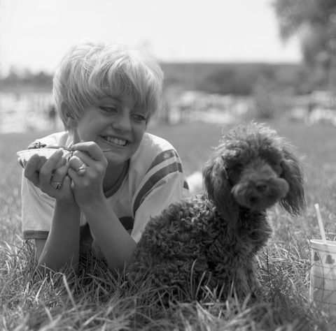 Goldie Hawn Eats Ice Cream With Her Dog