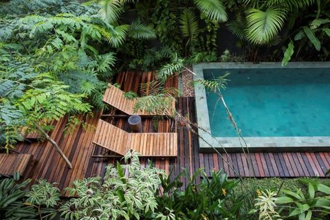 Vegetation, Jungle, House, Botany, Water, Tree, Landscape, Architecture, Rainforest, Eco hotel,
