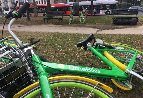 a13d792580c Lime Scooters - Bike Share Companies Pivot From Bikes to Electric ...