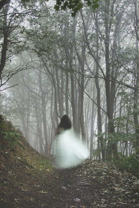 an out of focus, blurred ghostly woman wearing a white dress, running away from the camera on a misty autumn day in a forest