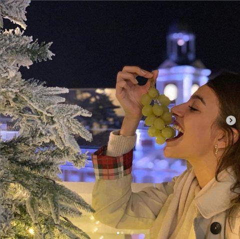 Tree, Christmas tree, Fun, Christmas, Organism, Photography, Animation, Winter, Plant, Christmas eve,