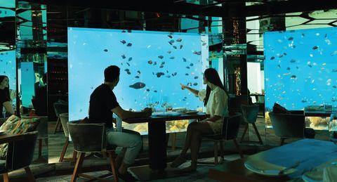 Los mejores hoteles bajo el agua habitaciones de hotel for El hotel que esta debajo del agua