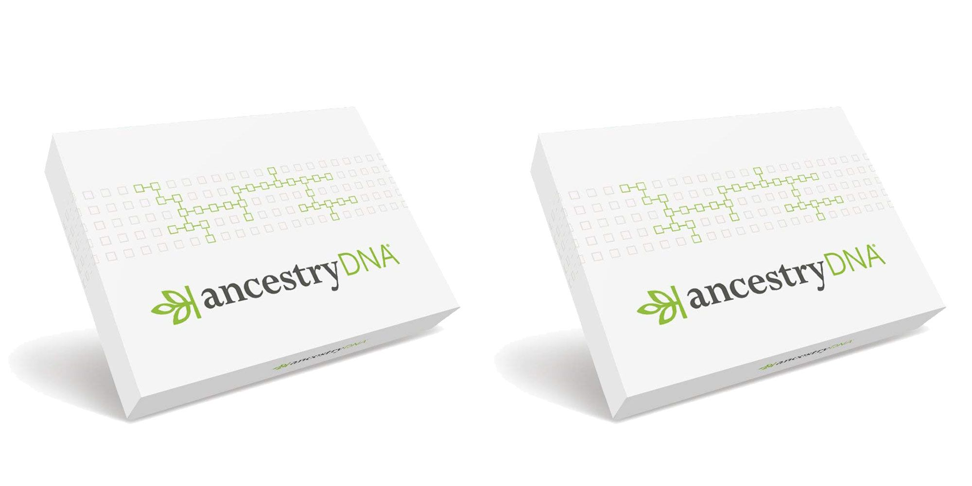 AncestryDNA's Genetic Ethnicity Test Is 50% Off
