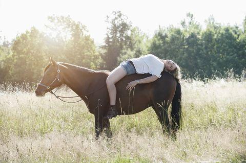 Horse, People in nature, Bridle, Rein, Grassland, Pasture, Stallion, Mare, Grass, Mane,