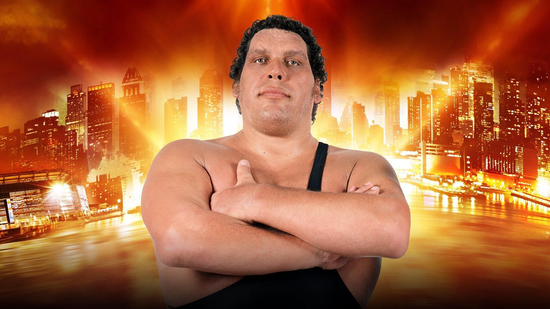 André the Giant Memorial Battle Royal