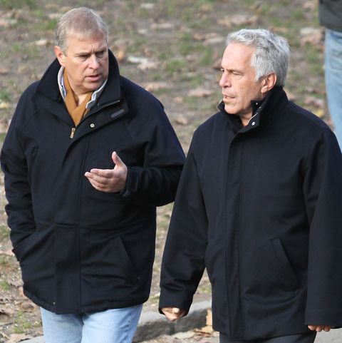 Image result for pictures of prince andrew and jeffrey epstein