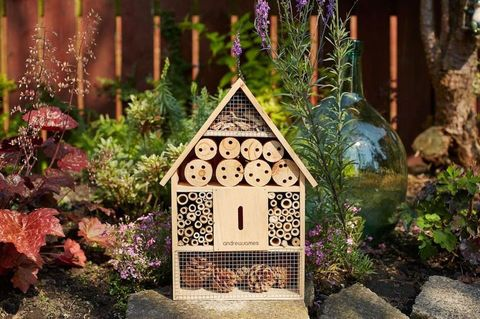 Andrew James bee and insect hotel photo