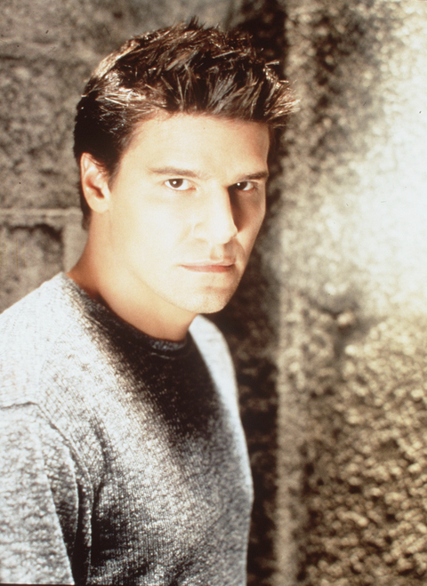 Angel star David Boreanaz reflects on the series' final episode 15 years after it aired