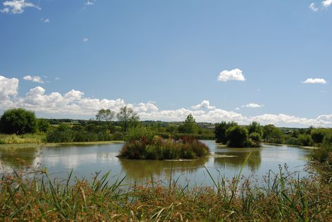 Natural landscape, Body of water, Nature, Sky, Water resources, Water, Natural environment, Vegetation, Nature reserve, River,