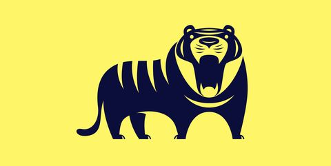 angry tiger roaring silhouette