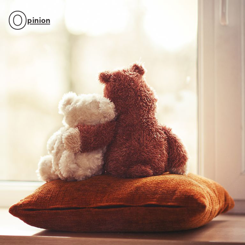 Teddy bear, Stuffed toy, Toy, Plush, Brown, Room, Textile, Fur, Bear,