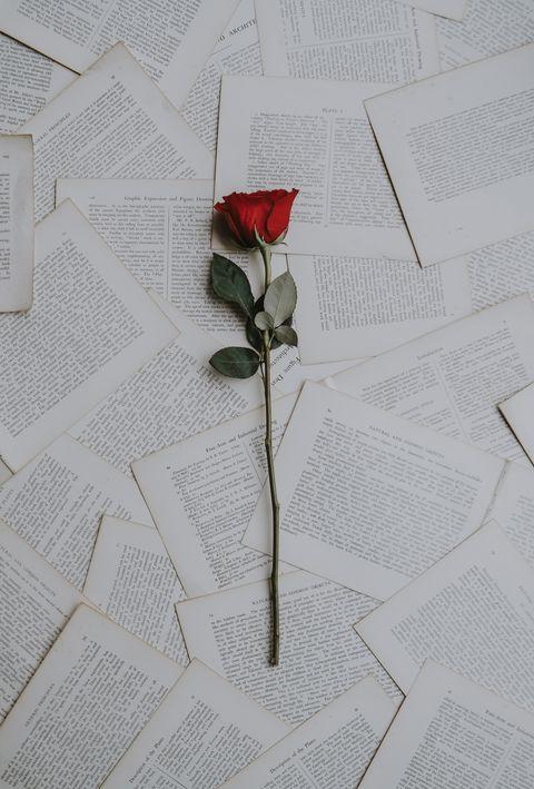 Flower, Plant, Botany, Rose, Plant stem, Material property, Rose family, Paper, Pedicel, Anthurium,