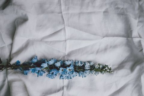Textile, Embroidery, Needlework, Stitch, Linens, Plant, Linen,