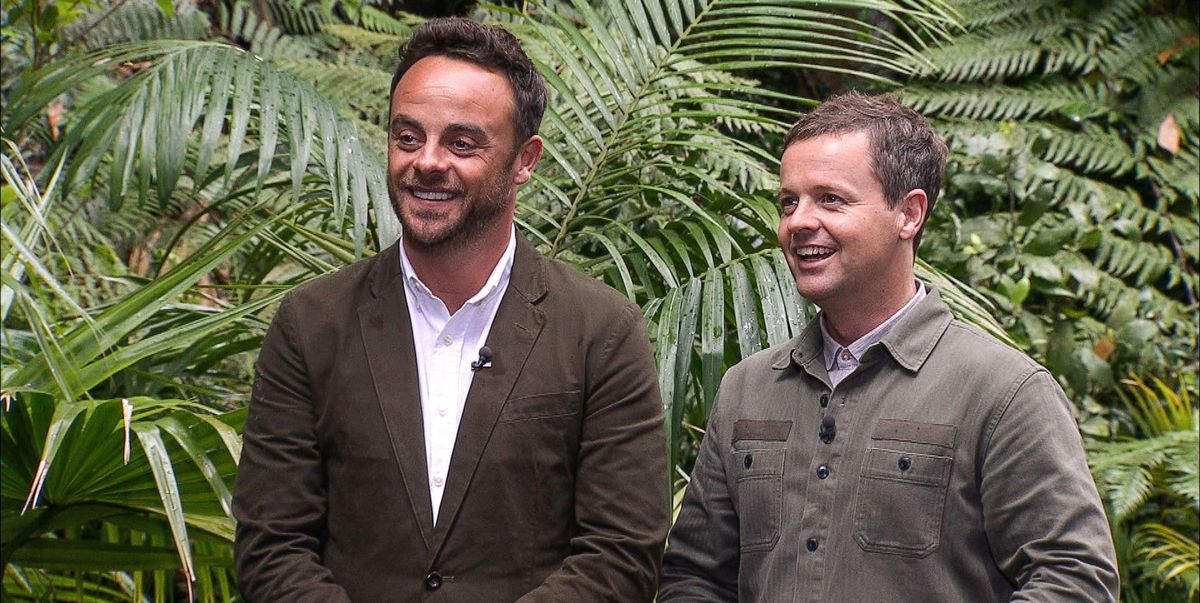 I'm a Celebrity will take place in UK countryside for 2020 series