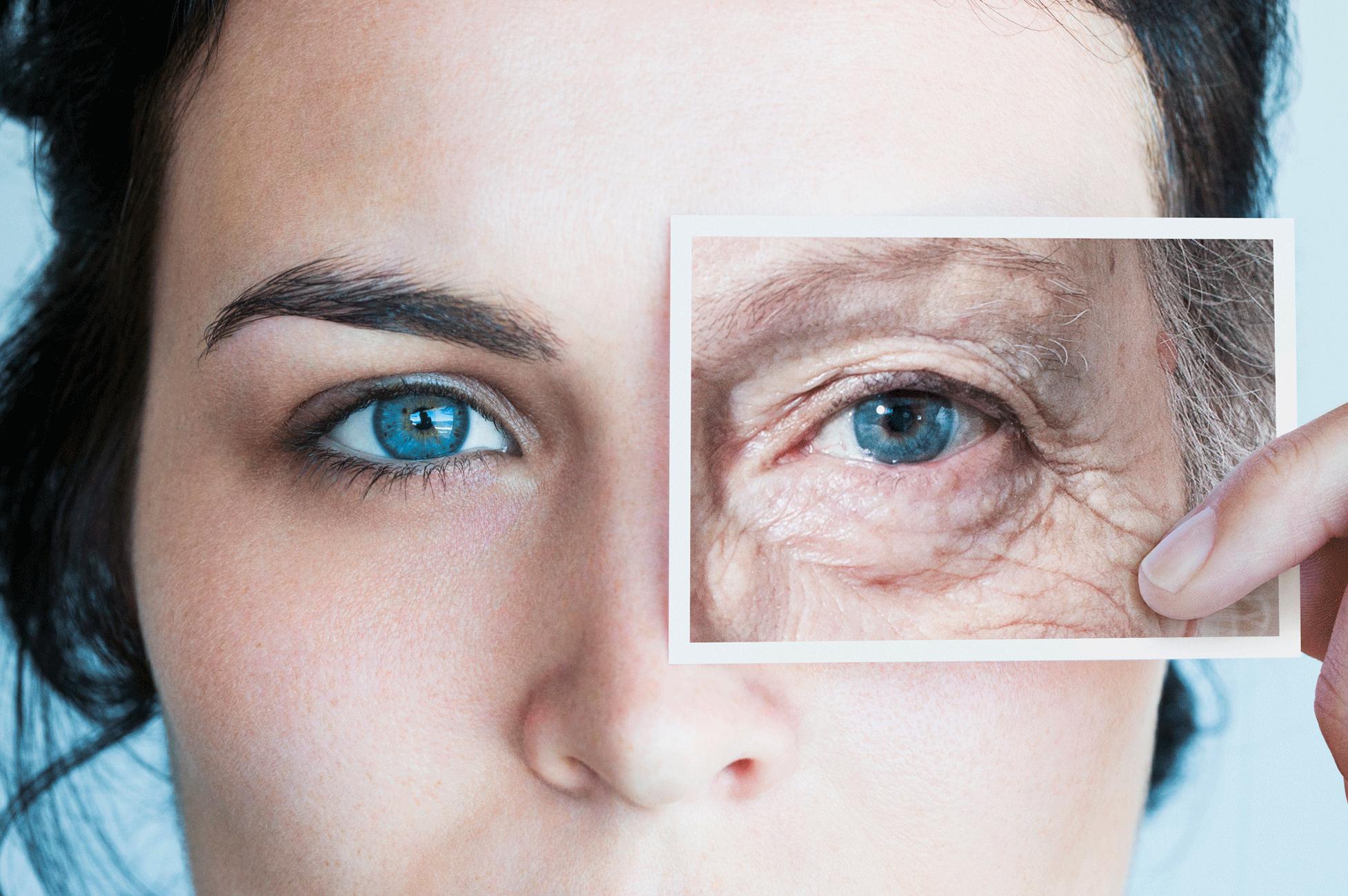 anti-aging wrinkle cream