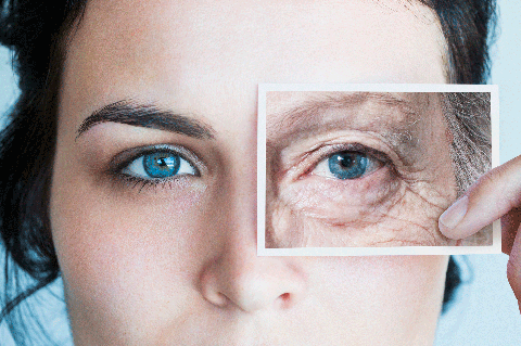 44d9e612c9ca 11 Best Anti-Aging Wrinkle Creams for Every Budget in 2019