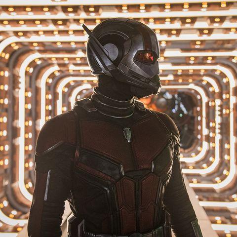 Avengers Endgame Ant Man