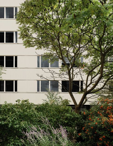 The Building's Facade
