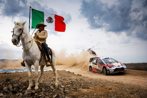 World rally championship, Sky, Horse, Vehicle, Rallying, Mode of transport, Car, Racing, Off-roading, Cloud,