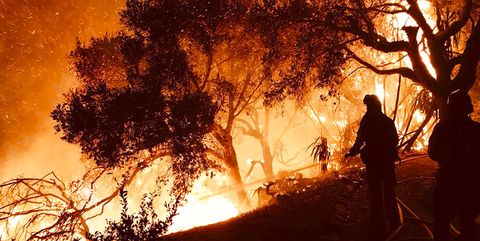 Wildfire, Heat, Fire, Sky, Flame, Tree, Atmospheric phenomenon, Branch, Event, Firefighter,