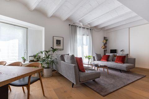 salón comedor moderno con dos sofás grises y techo con bóveda catalana