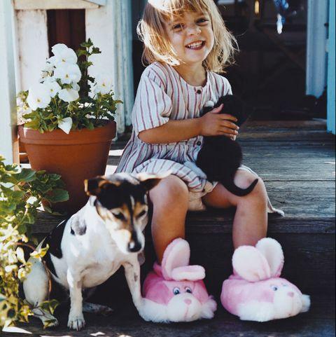 los mejores cuidados y caprichos para tus mascotas