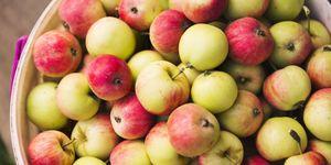 apple farms near me