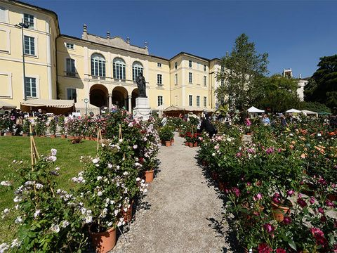 Property, Garden, Building, Flower, Plant, Botany, Spring, House, Architecture, Real estate,