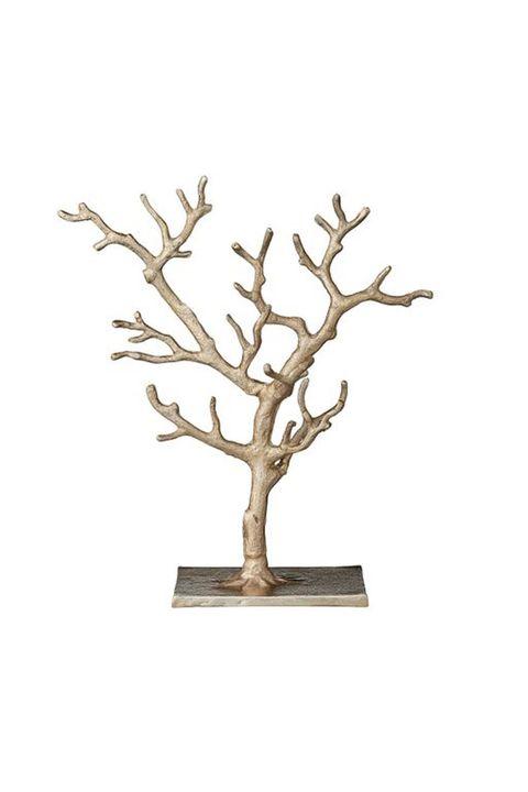 Branch, Tree, Twig, Plant, Woody plant, Houseplant, Flower,