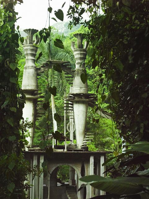 architectural structure in the forest