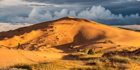 Desert, Nature, Natural environment, Sand, Sky, Dune, Wilderness, Ecoregion, Landscape, Aeolian landform,