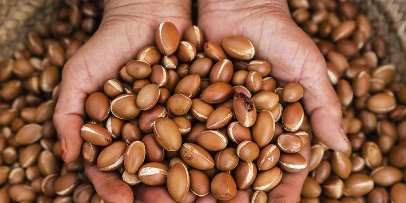 An expert guide to using argan oil in your beauty routine