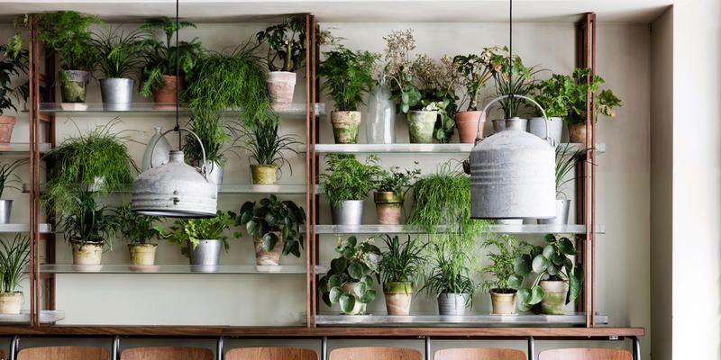 Arredare con i vasi suggerimenti per arredo di interni for Vasi da terra per interni moderni