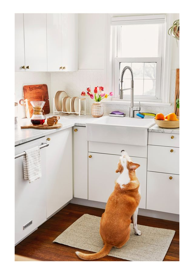 a clean, organized kitchen