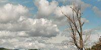 Nature, Vegetation, Daytime, Natural landscape, Natural environment, Cloud, Landscape, Photograph, Plant community, Bank,