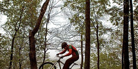Tire, Wheel, Bicycle wheel, Bicycle frame, Bicycle tire, Bicycle wheel rim, Mountain bike, Bicycle fork, Bicycle, Bicycle part,