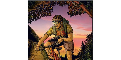 Bicycle frame, Bicycle, Bicycle wheel rim, Bicycle handlebar, Bicycle wheel, Bicycle tire, Painting, Bicycle fork, Bicycles--Equipment and supplies, Turban,