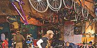 Wheel, Bicycle tire, Mode of transport, Bicycle wheel rim, Bicycle wheel, Bicycle frame, Bicycle, Bicycle part, Spoke, Rim,