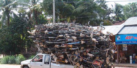 Wheel, Tire, Vehicle, Land vehicle, Truck, Arecales, Pickup truck, Fender, Woody plant, Rim,
