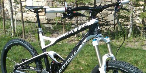 Bicycle tire, Bicycle frame, Bicycle wheel, Tire, Bicycle fork, Bicycle wheel rim, Bicycle part, Bicycle stem, Bicycle saddle, Bicycle handlebar,