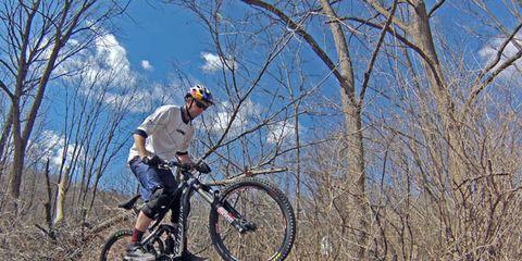 Bicycle wheel, Tire, Bicycle frame, Wheel, Bicycle tire, Bicycle wheel rim, Mountain bike, Bicycle fork, Bicycle, Spoke,