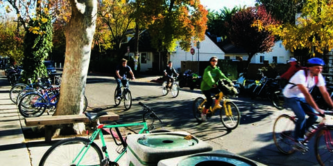 Tire, Wheel, Bicycle wheel, Bicycle tire, Bicycle wheel rim, Bicycle frame, Bicycle, Land vehicle, Bicycle part, Bicycle fork,