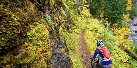 Wheel, Bicycle frame, Bicycle wheel, Mountain bike, Bicycle helmet, Bicycles--Equipment and supplies, Sports equipment, Bicycle wheel rim, Helmet, Mountain biking,