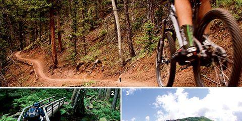 Bicycle tire, Nature, Vegetation, Bicycle wheel rim, Bicycle wheel, Spoke, Rim, Bicycle fork, Bicycle part, Bicycle,