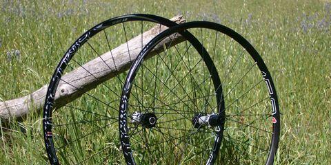 Bicycle wheel rim, Bicycle tire, Grass, Rim, Spoke, Plain, Grassland, Iron, Auto part, Grass family,
