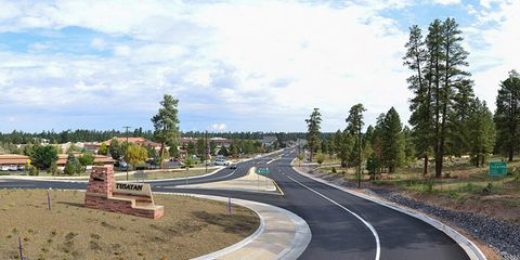 Road, Road surface, Asphalt, Infrastructure, Landscape, Street, Thoroughfare, Land lot, Highway, Woody plant,