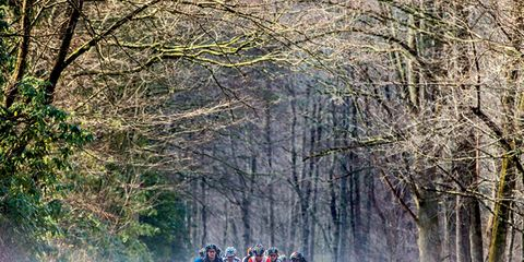 Endurance sports, Personal protective equipment, Helmet, Forest, Road cycling, Woodland, Racing, Bicycle jersey, Bicycle racing, Spring,